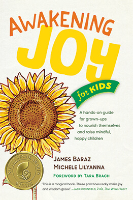Book Awakening Joy for Kids